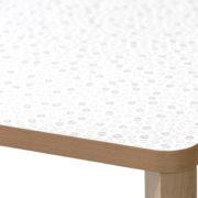 SANTIAGO-Table-421 (10)